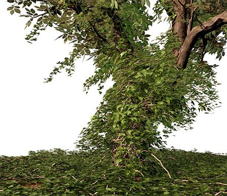 3d-плющ, выращенный вокруг дерева
