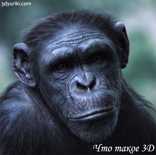 Что такое 3D