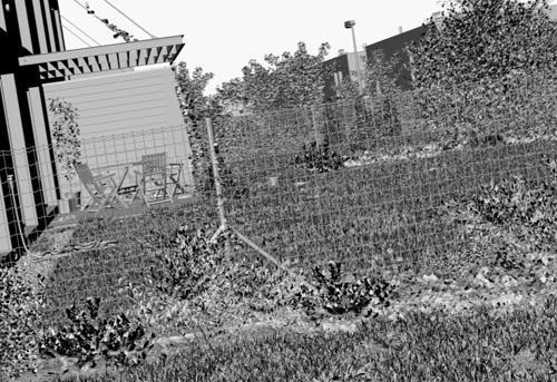 Сцена 3D-двора во вьюпорте 3ds Max