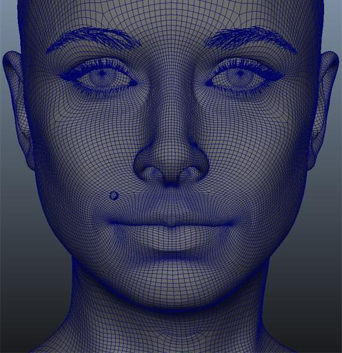 Wireframe лица красивой CG женщины