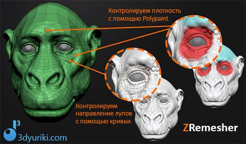 Контролируем лупы и плотность сетки в ZRemesher