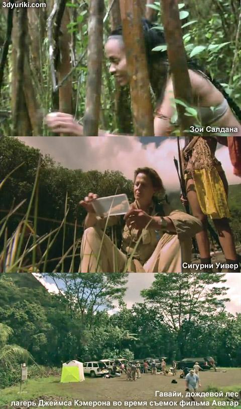 Тренировка актеров фильма Аватар в дождевом лесу на Гавайах