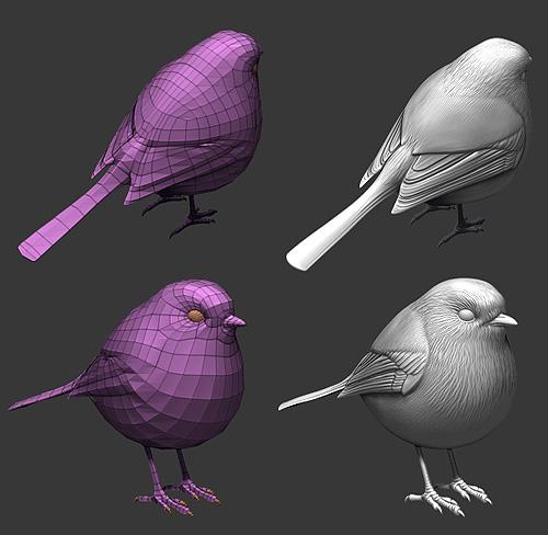 Топология 3D-птички и хайполи модель в ZBrush