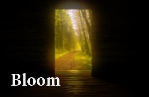 Блюм Bloom Ореол